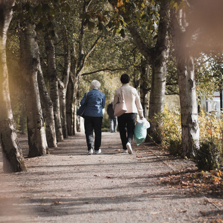 Two people walking away down an urban path lined by trees. Photo by Alex Motoc.